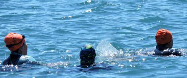 Eunike Nuoto in acque aperte